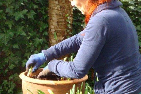 Asa who tends our gardens every season